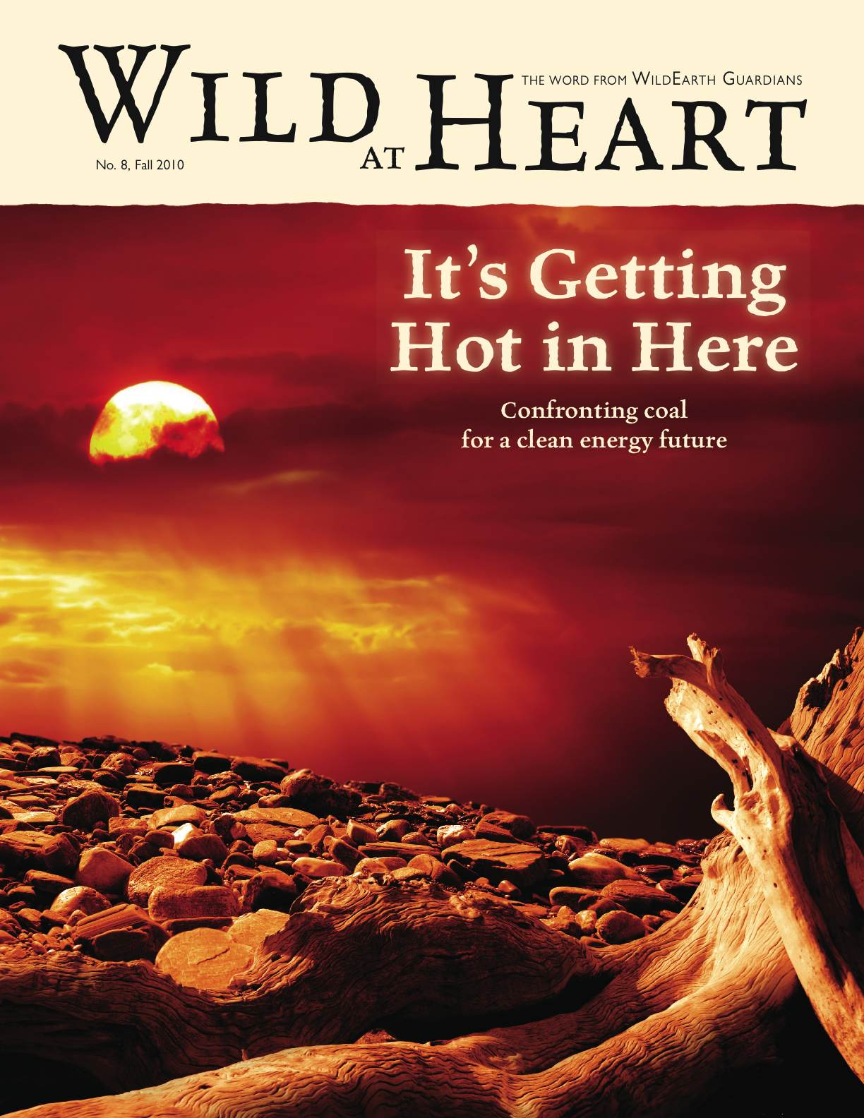Wild at Heart 8 Newsletter cover