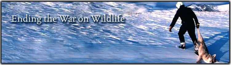 Ending War on Wildlife Banner