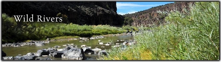 Wild Rivers Web Banner
