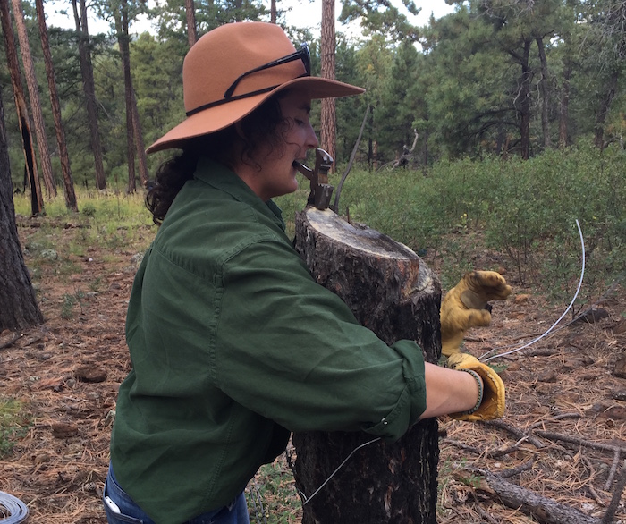 Fixing fences in the Gila pc WildEarth Guardians