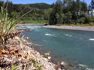 Greenwater River, Mt. Baker Snoqualmie NF, WA pc WG