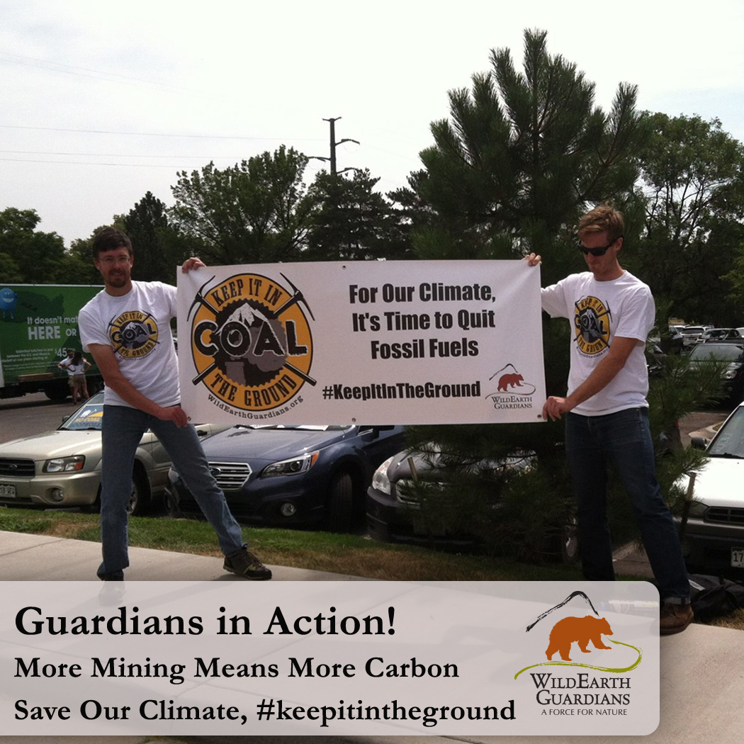 Guardians in Action for the Climate Meme