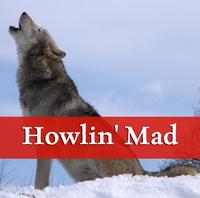 Howlsnow wikimedia public Domain pic by Retron