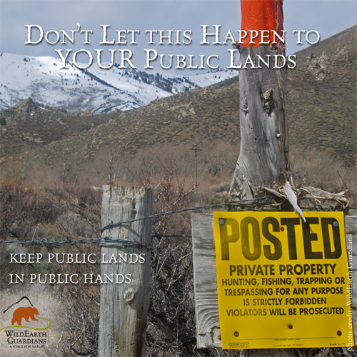 Don't let this happen to YOUR public lands. pc WildEarth Gua