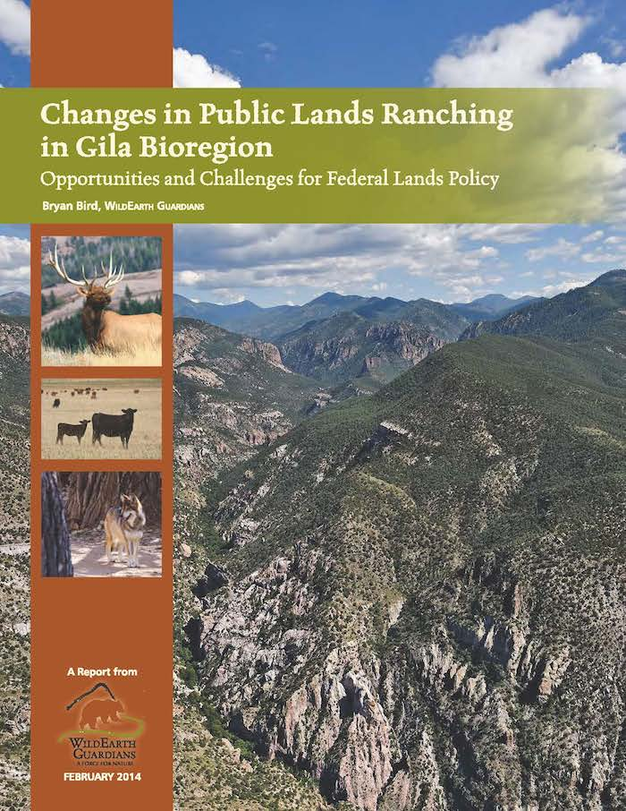 Changes in Public Lands Ranching Report cover
