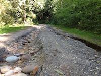 road in Mt. Baker pc WG