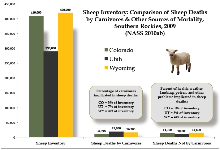 Sheep chart southern Rockies