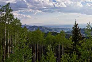 Santa Fe National Forest pc Thomas Shahan