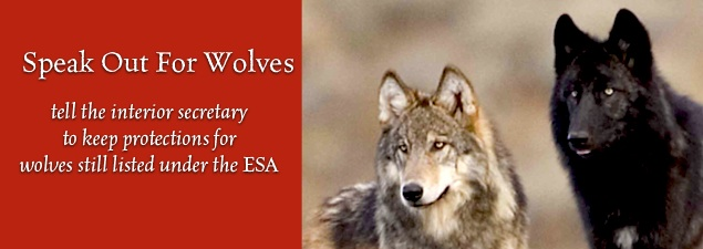 Slider Speak Out for Wolves pc Ray Laible