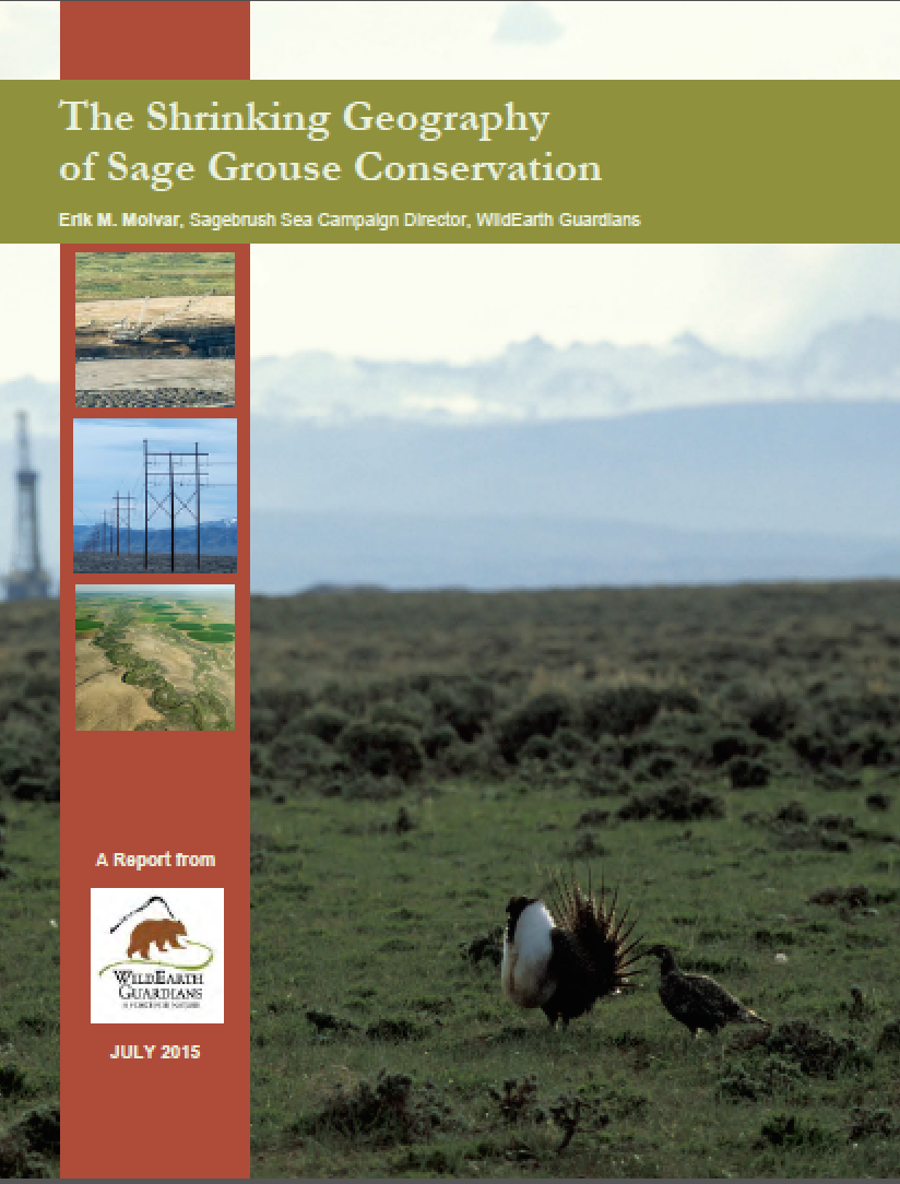 Shrinking Geography of Sage Grouse Report Cover thumb