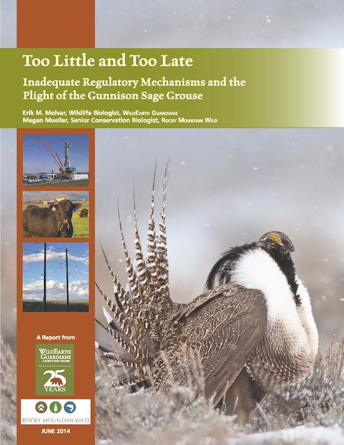 Too Little Too Late Report Cover June 2014