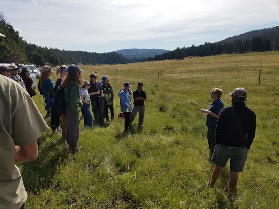Valles Caldera work crew 2016 pc WG