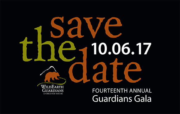 Save the Date Fourteenth Annual Guardians Gala 10.06.17