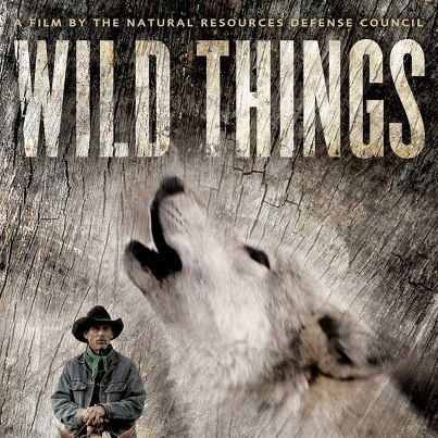 Wild Things Film