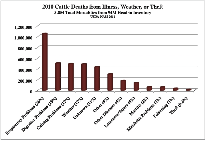 Cattle losses by health
