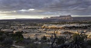 Cedar Mesa, Bears Ears National Monument  pc BLM