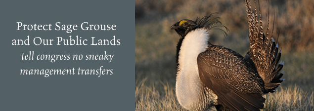 grouse public lands slider