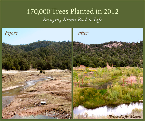2012 Year End Fundraiser River Restoration R2